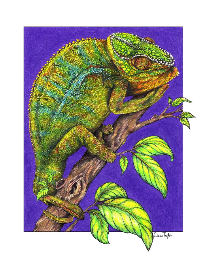 """Colorful Chameleon""  by Cherie Taylor"