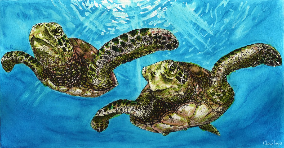 """Sea Turtles""  by Cherie Taylor"
