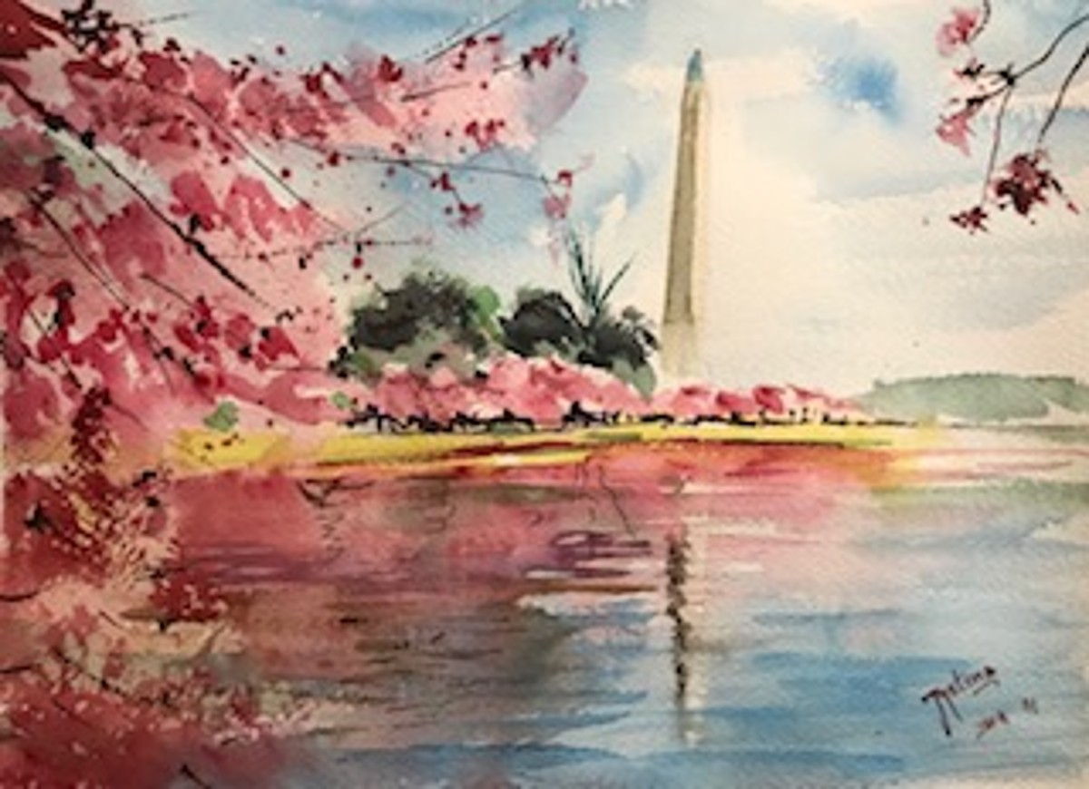 "Cherry Blossoms, DC, 11"" x 14"""