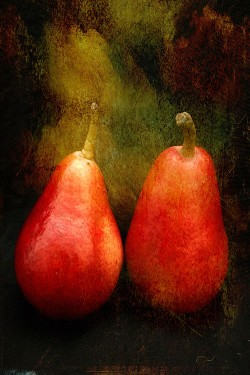 """Two Pears"" by Terri Parent"